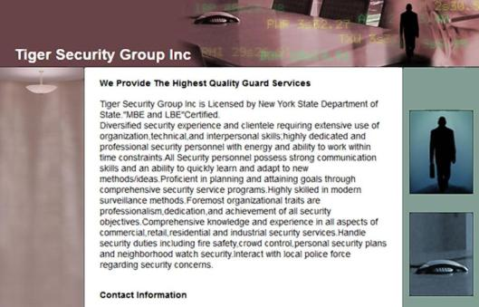 Tiger Security Group Inc
