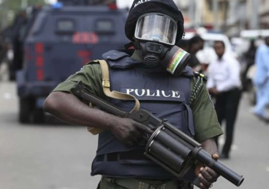 Special Anti-Robbery Squad Police, Nigerian police