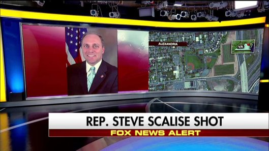 Rep Steve Scalise-SHOT